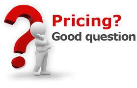 Cat costa un site web?