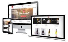 Dezvoltare Magazin Online - Wine-box.ro